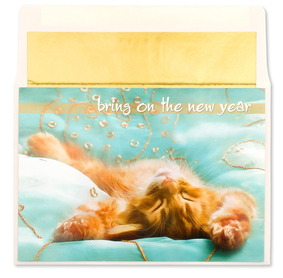 papyrus card new year cat lying on back